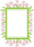Рамка прямоугольная с абстрактными заводами Флористическое украшение Стоковое фото RF