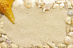Рамка раковины моря Стоковое Фото