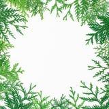 Рамка рождества круглая деревьев зимы на белой предпосылке Концепция рождества или Нового Года Плоское положение, взгляд сверху Стоковые Изображения