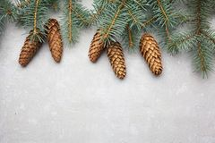 Рамка рождества на предпосылке рождественской елки, теме Нового Года стоковое изображение rf