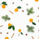 Рамка рождества сделанная цитруса с листьями и ветвями ели на белой предпосылке Плоское положение Взгляд сверху Стоковые Изображения