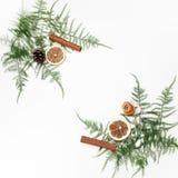Рамка рождества сделанная цитруса с листьями и ветвями ели на белой предпосылке Плоское положение Взгляд сверху Стоковая Фотография RF
