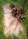 Рамка рождества украшенная с конусами ели и зелеными ветвями Стоковое Фото