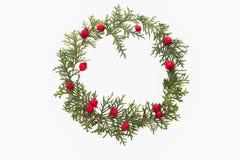 Рамка рождества сделанная зеленых хворостин туи и красного одичалого подняла плодоовощи на белой предпосылке Взгляд сверху, плоск Стоковая Фотография