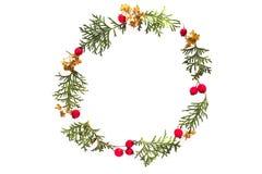 Рамка рождества сделанная зеленых хворостин туи и красного одичалого подняла плодоовощи на белой предпосылке Взгляд сверху, плоск Стоковое Фото