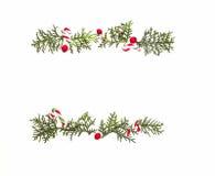 Рамка рождества сделанная зеленых хворостин туи и красного одичалого подняла плодоовощи на белой предпосылке Взгляд сверху, плоск Стоковое Изображение RF
