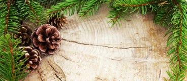 Рамка рождества украшенная с конусами ели и зелеными ветвями Стоковое фото RF