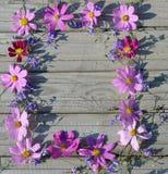 Рамка розовых цветков на предпосылке доск Стоковое Изображение RF