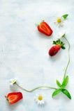 Рамка свежие зрелые клубники и цветки стоцвета на голубой предпосылке Стоковые Изображения