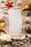 рамка сделала раковины Стоковая Фотография