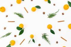 Рамка сделанная ветвей цитруса, циннамона и ели на белой предпосылке Плоское положение Взгляд сверху Стоковые Фотографии RF