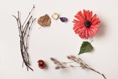 Рамка сделанная из заводов осени и красного цветка Стоковая Фотография