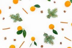 Рамка сделанная цитруса с листьями, циннамоном и ветвями ели на белой предпосылке Плоское положение Взгляд сверху Стоковые Изображения RF