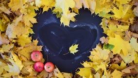 Рамка сердца форменная в листве сток-видео