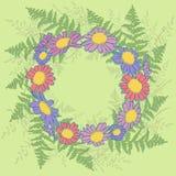 Рамка стоцвета Стоковое фото RF