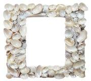 Рамка сделана seashells Стоковые Изображения