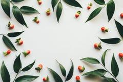 Рамка с листьями зеленого цвета и красными ягодами Стоковые Изображения RF