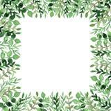 Рамка с листьями и ветвями акварели яркими ыми-зелен иллюстрация вектора