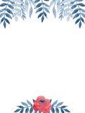 Рамка с листьями красной розы и сини акварели бесплатная иллюстрация