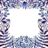 Рамка с листьями, папоротниками и цветками акварели темносиними иллюстрация штока