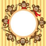 Рамка с обезьяной EPS 10 в векторе Стоковая Фотография RF