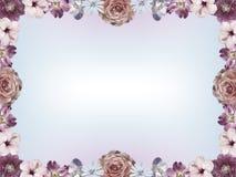 Рамка с пастельными покрашенными цветками и градиентом цвета копирует космос стоковые изображения