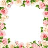 Рамка с пинком и белыми розами также вектор иллюстрации притяжки corel Стоковое фото RF