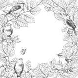 Рамка с птицами на ветвях иллюстрация штока