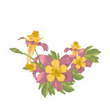 Рамка с цветками белизны зацветая Стоковое Фото