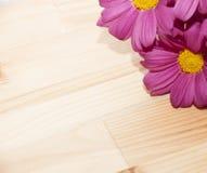 Рамка с цветками в угле Стоковые Изображения