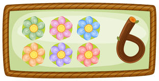 Рамка с 6 цветками Стоковая Фотография