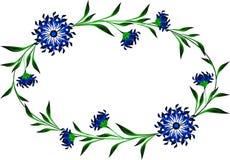 Рамка с cornflowers в форме круга Стоковая Фотография