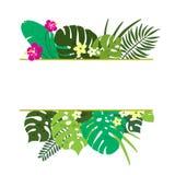 Рамка тропических листьев Листва джунглей стоковые изображения