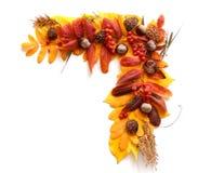 Рамка, угол листьев осени и плодоовощи Стоковое Изображение RF