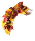 Рамка, угол листьев осени и плодоовощи Стоковое фото RF