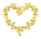 Рамка формы сердца от желтых цветков орхидеи Стоковые Изображения RF