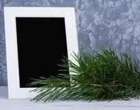 Рамка фото за ветвью рождественских елок Стоковая Фотография RF