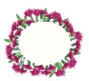 Рамка цветка акварели с гвоздикой стоковая фотография