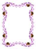 рамка цветка бабочки Стоковая Фотография