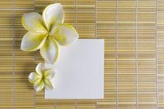 рамка цветка курорта Стоковое фото RF