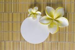 рамка цветка курорта Стоковые Фото