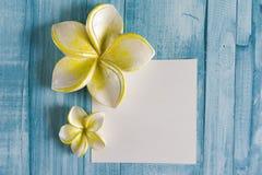 рамка цветка курорта Стоковое Фото