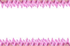 Рамка цветка лотоса на белизне для предпосылки Стоковые Изображения
