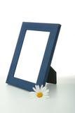 рамка цветка маргаритки Стоковые Изображения