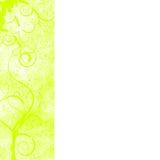 рамка цветка предпосылки орнаментирует белизну Стоковая Фотография RF