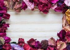 Рамка цветка сухая Стоковая Фотография