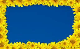 рамка цветка Стоковые Фотографии RF