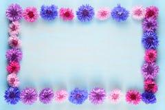 Рамка цветка cornflowers Стоковые Изображения RF