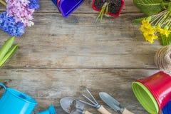 Рамка цветков весны и садовничая инструментов Стоковое Изображение