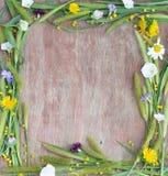 Рамка цветков и ушей Стоковая Фотография